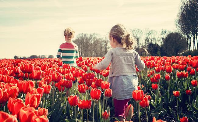 Primavera ropa