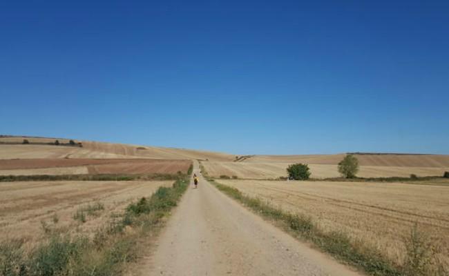 camino-santiago-viaje-interior